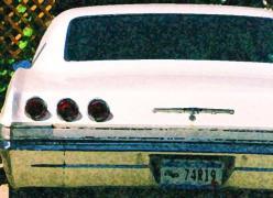 35mm Caprice