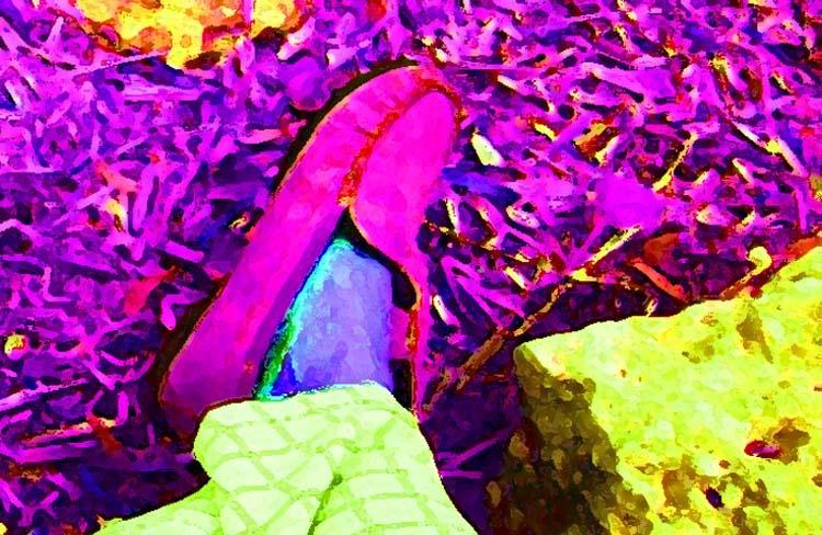 35mm pink slipper