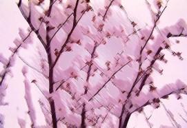 35mm pink