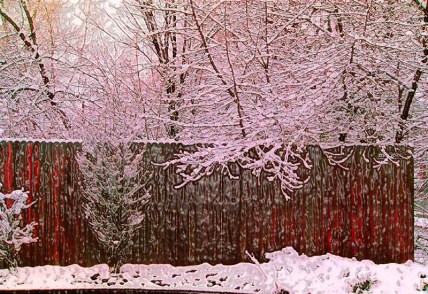 35mm snow fence