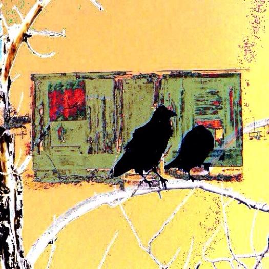 Digital (1-1) ravens 2