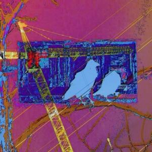 Digital (1-2) ravens 3