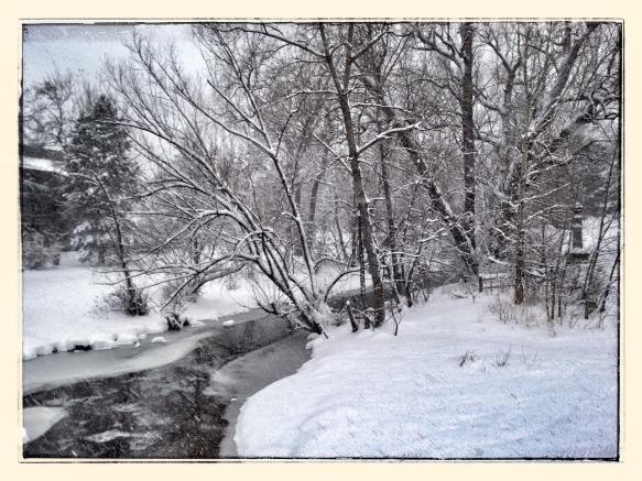 Digital bw at the creek