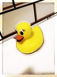 Digital rubber duckie