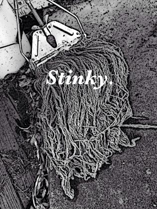 iphone bw stinky