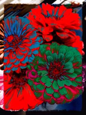 flow - i - flowers