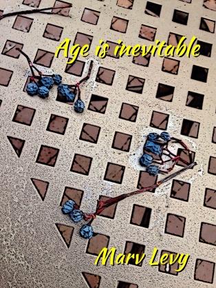 w - i - age is inevitable