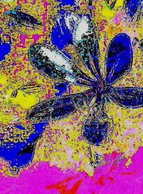 flow - d - maybe im amazed