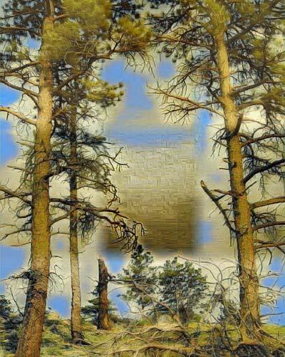 tree - d - 92837027